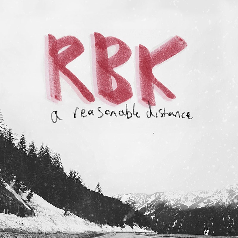 rushmore beekeepers - a reasonable distance album cover